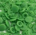 20 BabySnap Druckknöpfe T5 grün B14
