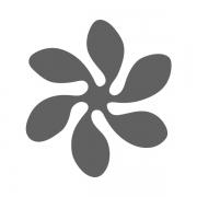 Motivstanzer groß Blume 2,5cm