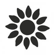 Motivstanzer groß Sonnenblume 2,5cm