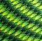 15m Paracord 550 Typ III gecko